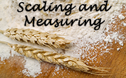 Scaling and Measuring
